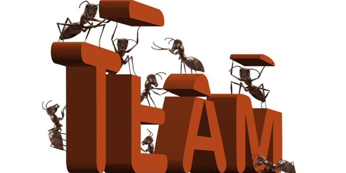 როგორ შევქმნათ და განვავითაროთ ეფექტური თანამშრომლების გუნდი ?